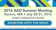 2016-aad-summer-meeting-klein